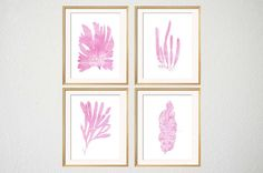 Pink Sea Algae Watercolor Print Set by BeachHouseGallery, Starting at $27.99
