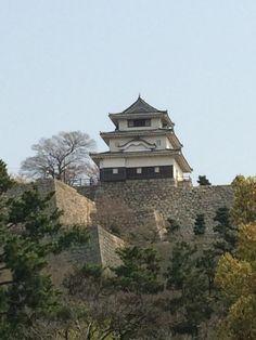日本一の石垣にそびえ立つ天守閣 Japanese Castle, Japan Photo, Samurai, Mansions, History, House Styles, Home, Stuff Stuff, Historia