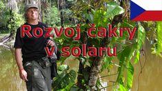 Meditace - rozvoj čakry v solaru - Petr Chobot