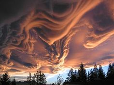 Aren't they amazing?  I began making up stories to fit cloud shapes when I was six and I still do this from time to time.  But occasionally the clouds can speak more eloquently than I ever could...Asperatus Clouds Over New Zealand.