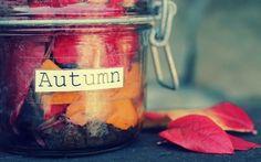 Autumn leaf jar autumn leaves fall autumn pictures autumn 2013 fall 2013