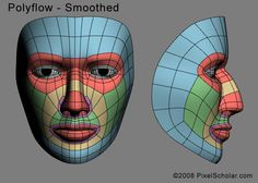 Edge loops for human faces