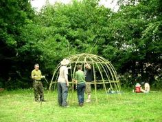 Build Your Own Backyard Living Willow Dome