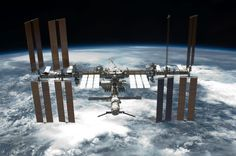 When it comes to doing science on the International Space Station (ISS), the laws of gravity have been flipped: what goes up mostly stays up. A case in point are two freezers packed with more than 2,000 Arabidopsis seedlings from N.C. State University awaiting return to Earth, where they can be analysed for changes in gene expression.
