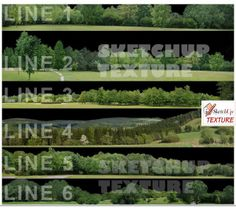SKETCHUP TEXTURE: FREE TREES LINES PNG