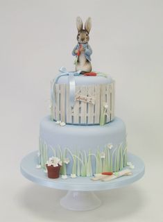Emma Jayne Cake Design I Peter Rabbit Cake