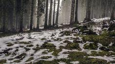 Wallpaper: http://desktoppapers.co/mq52-mountain-snow-woods-nature/ via http://DesktopPapers.co : mq52-mountain-snow-woods-nature