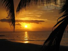 Sunset on the beach at the Clubhotel RIU Tequila, Mexico