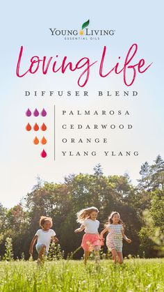 Young Living 491877590556146362 - Set a peppy mood with our Loving Life blend. Cedarwood, Orange, and Ylang Ylang combine with Palmarosa for a cheerful scent. Source by youngliving Young Living Diffuser, Young Living Oils, Young Living Essential Oils, Homemade Essential Oils, Essential Oil Uses, Doterra Essential Oils, Yl Oils, Palmarosa Essential Oil, Essential Oil Diffuser Blends