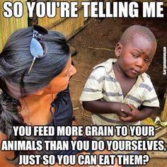 so you're telling me #meme #vegan