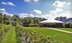 Groupon - Wine Tour with Tasting or UnCorked Event for Two at Keel and Curley Winery (Half Off) in Plant City. Groupon deal price: $10.00