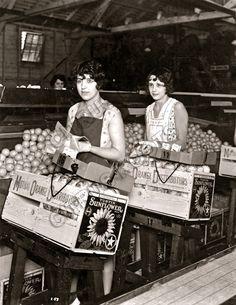 Santa Ana-Tustin Mutual Citrus Assn [circa 1934]. Orange County Packinghouses - Citrus Packinghouse Photos - Citrus Roots - Preserving Citrus Heritage Foundation