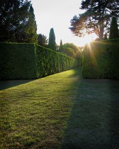I don't care what my home looks like; I just want it to have a SWEET hedge maze