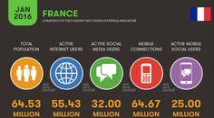 Key digital statistic indicators, 2016  #France #FR