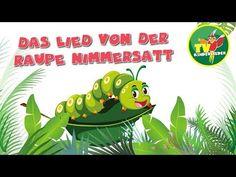 Das Lied von der Raupe Nimmersatt - Kinderlieder zum Mitsingen - YouTube