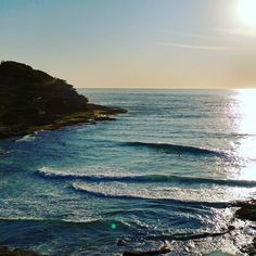 M A C K E N Z I E S  M O R N I N G S #Mates #mornings #fitness #coves #beaches #backpain #oldage #fitfam #recovery #relaxation #timeout #surf #sunrise #coastal #walk #bonditobronte #earlystart #summer #surfers #surf #boardies #speedos #bikinis #yogapants #cardio #bronte #bondi #tamarama #eastside by farks13 http://ift.tt/1KBxVYg