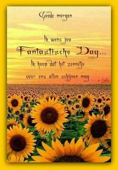 Goedemorgen ik wens jou een fantastische dag. Ik hoop dat het zonnetje voor ons allen schijnen mag