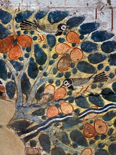 ♔ Painting of birds in a fruit tree from the tomb of Userhet ~  Western Thebes ~ Egypt