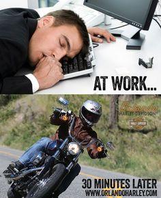 stupid-biker-slut
