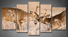 Amazon.com - 5 Panel Wall Art White Tailed Deer Bucks Sparring Painting Pictures Print On Canvas Animal The Picture For Home Modern Decoration piece (Stretched By Wooden Frame, Ready To Hang) -