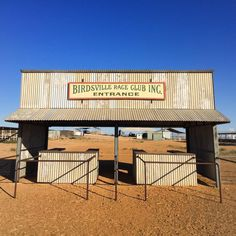 A few days behind because I am in the middle of the outback. Currently in Oodnadatta. Here's one from two days ago. Birdsville swells from 100 to 7000 for the annual races. #noservice #birdsville #races #outback #Queensland #thisisqueensland #Australia #seeaustralia by five_six