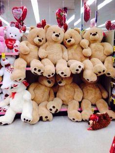 Giant teddy bear for v day❤️❤️❤️<< Always wanted one Huge Teddy Bears, Giant Teddy Bear, Human Size Teddy Bear, Bear Valentines, Happy Valentines Day, Costco Bear, Teedy Bear, Big Stuffed Animal, Teddy Bear Gifts