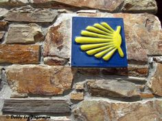 My Typical Day Walking Along the Camino de Santiago (and a few more scallop shells and yellow arrow pictures featured in tiles and mosaics).
