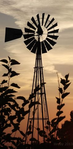 When I was a kid, I played in the huge cast iron kettle my Grandpa used to water his cows. If the wind wasn& blowing one of us kids would go up and spin the blades. Country Farm, Country Life, Country Living, Country Roads, Farm Windmill, Windmill Art, Old Windmills, Country Scenes, Water Tower