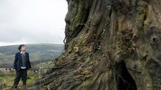 New clips, images and posters for A MONSTER CALLS starring Lewis MacDougall, Liam Neeson, Felicity Jones and Sigourney Weaver. Liam Neeson, Felicity Jones, A Monster Calls, Max Von Sydow, New Movies, Movies To Watch, Movies Online, Martin Scorsese, New Trailers