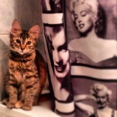Mimi with Monroe!:)