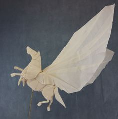 Pegasus (n=6) | by Quentin Origami