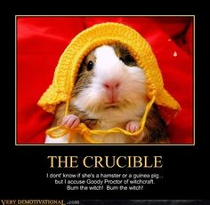essay test the crucible Many critics consider the crucible a critical commentary on mccarthy's persecution of communists (from: expository essay: effects of fear.