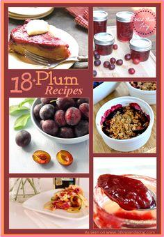 18 fresh plum recipes Over 18 Fresh Plum Recipes (Seasonal Fruit)