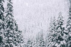 http://ift.tt/1ZY8ZTJ #Nature breathtaking #Photos Frozen by ryanmillier http://ift.tt/1UCfuVN