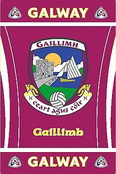 Quality Irish GAA County Rug showing the official Galway GAA logo. Officially licensed with permission from GAA. Family History Book, Galway Ireland, My Favorite Image, Irish, Rugs, My Love, Notes, Football, Sports