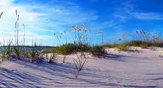 Love this beach in Florida!