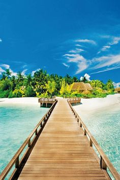 Boardwalk on some tropical island