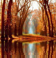 gif otoño animado