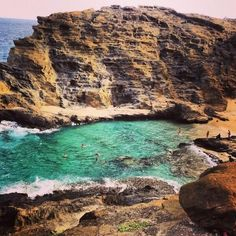 Oahu, Eternity Beach is a bit of a hike down to get to it but you can also see it from the street. There you will often see giant sea turtles swimming with the human swimmers.