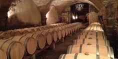 """Résultat de recherche d'images pour """"wine tasting in Provence"""""""