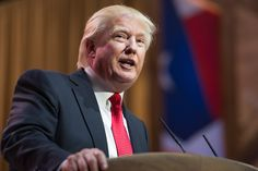 At a rally in Reno Donald Trump stated that he supports state cannabis laws.