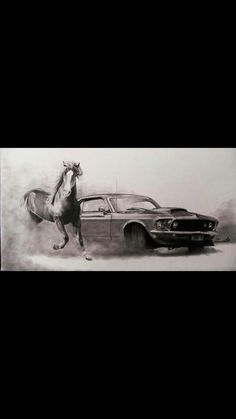 cool photo of a Mustang