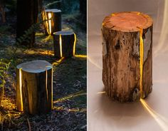 Tasmania-based furniture and lighting designer Duncan Meerding highlights the naturally occuring cracks in sustainably sourced logs by inserting warm yellow LEDs that illuminate each piece of wood from within. Tree Stump Table, Tree Stumps, Wood Logs, Old Trees, Log Furniture, Solar Lights, Decoration, Lighting Design, Light Up