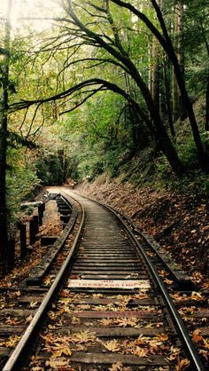 Fall on the tracks  source Flickr.com Beautiful Places To Travel, Beautiful Sites, Art Transportation, Railroad Photography, Old Trains, Ferrat, All Nature, Train Tracks, Beautiful Landscapes