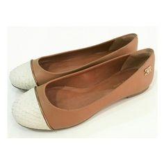 Sapatilha Morena Rosa Shoes #weloveit #news #inverno15 AMAMOS! ♡