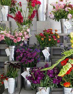 FLORISTERIA AMPERSAND http://decovelvet.blogspot.com.es/