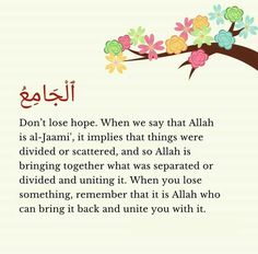 Dont Lose Hope, Islam Quran, Bring It On, Sayings, Lyrics, Quotations, Idioms, Quote, Proverbs