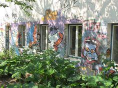 Gemüsekästen vor Graffitiwand 2