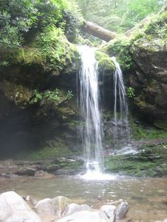Roaring Fork Motor Nature Trail in the Great Smoky Mountains