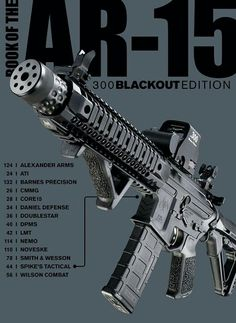 300 Black Out AR Rifle